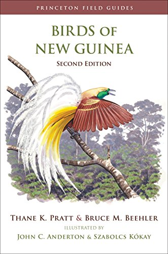 9780691095639: Birds of New Guinea (Princeton Field Guides)