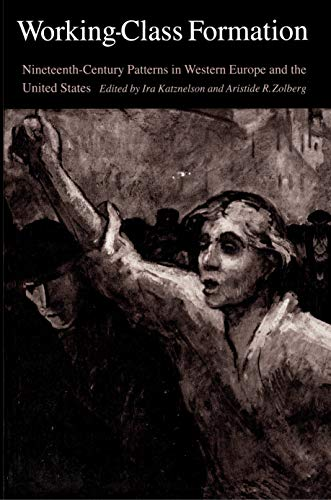 9780691102078: Working-Class Formation: Nineteenth-Century Patterns in Western Europe and the United States