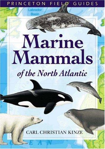 9780691113074: Marine Mammals of the North Atlantic (Princeton Field Guides)