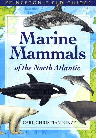 9780691113081: Marine Mammals of the North Atlantic (Princeton Field Guides)