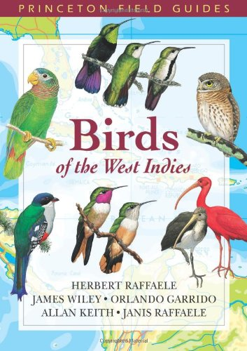 9780691113197: Birds of the West Indies (Princeton Field Guides)