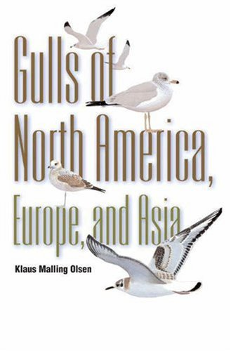 9780691113272: Gulls: Of North America, Europe, and Asia (Field Guides)