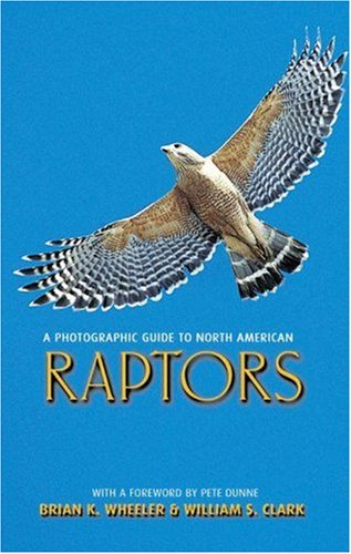 9780691116440: A Photographic Guide to North American Raptors