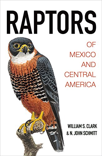 9780691116495: Raptors of Mexico and Central America
