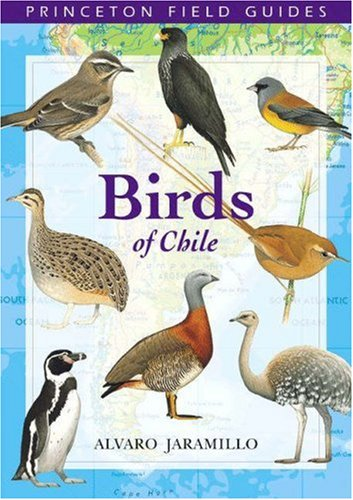 9780691117409: Birds of Chile (Princeton Field Guides)
