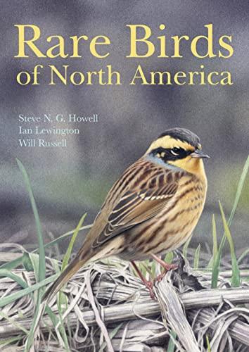 9780691117966: Rare Birds of North America
