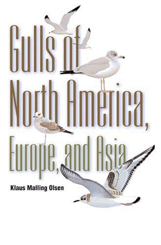 Gulls: Of North America, Europe, and Asia: Olsen, Klaus Malling; Larsson, Hans