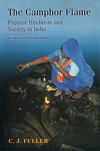9780691120485: The Camphor Flame: Popular Hinduism and Society in India