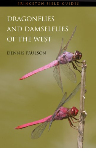 9780691122809: Dragonflies and Damselflies of the West (Princeton Field Guides)