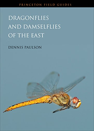 9780691122823: Dragonflies and Damselflies of the East (Princeton Field Guides)