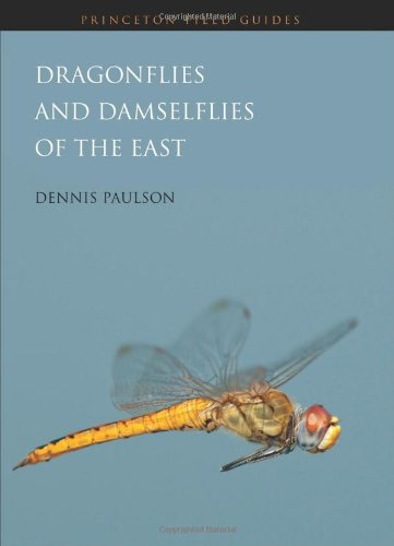 9780691122830: Dragonflies and Damselflies of the East (Princeton Field Guides)