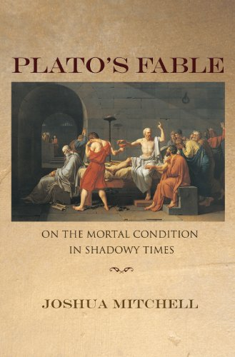 9780691124384: Plato's Fable: On the Mortal Condition in Shadowy Times (New Forum Books)