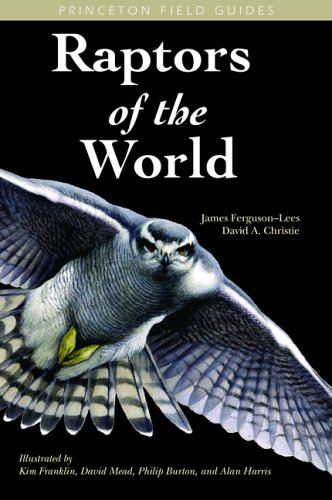 9780691126845: Raptors of the World (Princeton Field Guides)