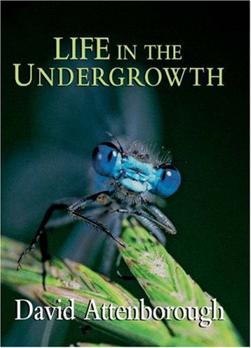 9780691127033: Life in the Undergrowth