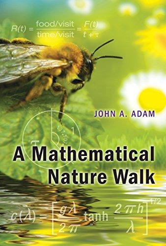 9780691128955: A Mathematical Nature Walk