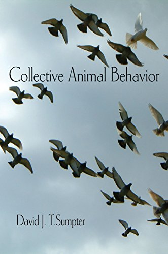 9780691129631: Collective Animal Behavior
