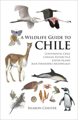 9780691129754: A Wildlife Guide to Chile: Continental Chile, Chilean Antarctica, Easter Island, Juan Fernández Archipelago: Continental Chile, Chilean Antarctica, Easter Island, Juan Fernandez Archipelago