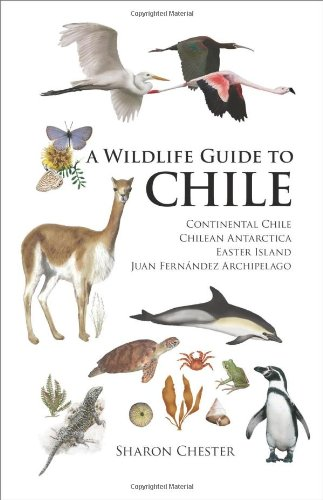 9780691129761: A Wildlife Guide to Chile: Continental Chile, Chilean Antarctica, Easter Island, Juan Fernández Archipelago: Continental Chile, Chilean Antarctica, Easter Island, Juan Fernandez Archipelago