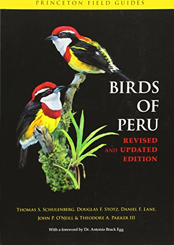 Birds of Peru: Revised and Updated Edition (Princeton Field Guides) (9780691130231) by Thomas S. Schulenberg; Douglas F. Stotz; Daniel F. Lane; John P. O'Neill; Theodore A. Parker
