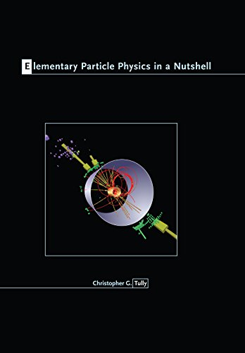9780691131160: Elementary Particle Physics in a Nutshell