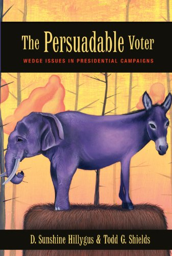 9780691133416: The Persuadable Voter: Wedge Issues in Presidential Campaigns