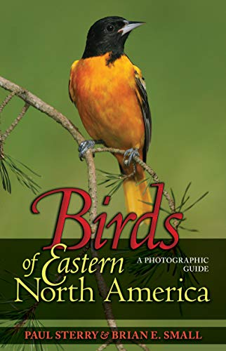 9780691134260: Birds of Eastern North America: A Photographic Guide