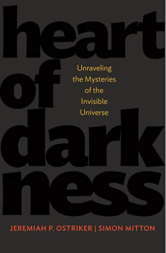 9780691134307: Heart of Darkness: Unraveling the Mysteries of the Invisible Universe (Science Essentials)