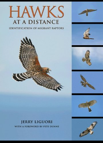 9780691135588: Hawks at a Distance: Identification of Migrant Raptors