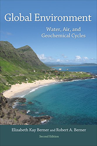 9780691136783: Global Environment: Water, Air, and Geochemical Cycles