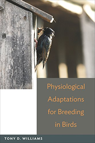 9780691139821: Physiological Adaptations for Breeding in Birds