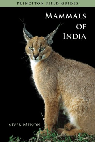 9780691140674: Mammals of India (Princeton Field Guides)