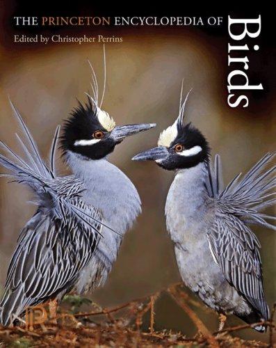 9780691140704: The Princeton Encyclopedia of Birds