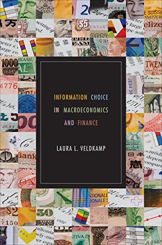 9780691142203: Information Choice in Macroeconomics and Finance