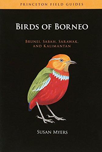 Birds of Borneo: Brunei, Sabah, Sarawak, and Kalimantan (Paperback): Susan Myers