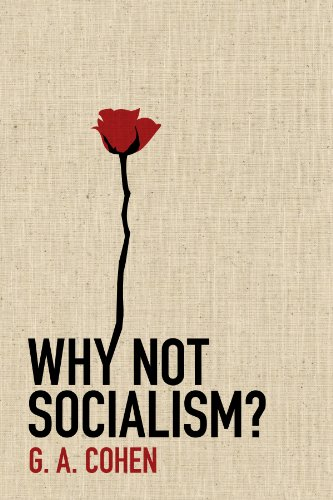 9780691143613: Why Not Socialism?