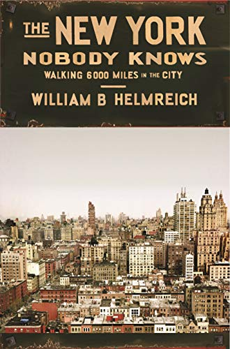 9780691144054: The New York Nobody Knows: Walking 6,000 Miles in the City