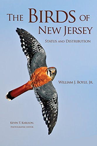 The Birds of New Jersey: Status and Distribution (Hardback): William J. Boyle