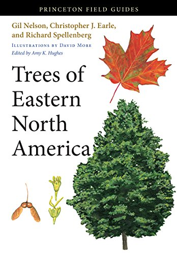 9780691145907: Trees of Eastern North America (Princeton Field Guides)