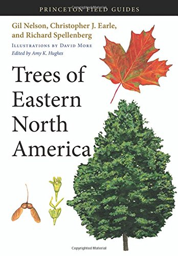 9780691145914: Trees of Eastern North America (Princeton Field Guides)