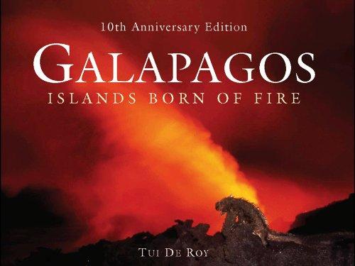 9780691146379: Galapagos: Islands Born of Fire