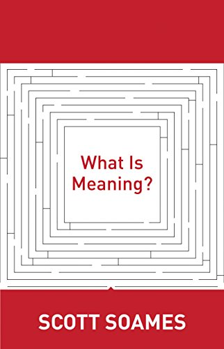 9780691146409: What Is Meaning? (Soochow University Lectures in Philosophy)