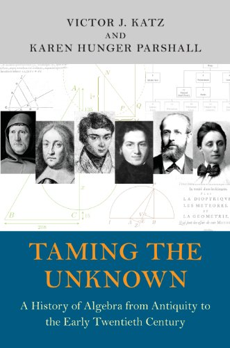 9780691149059: Taming the Unknown: A History of Algebra from Antiquity to the Early Twentieth Century