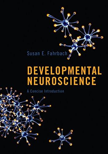 Developmental Neuroscience: Susan E. Fahrbach
