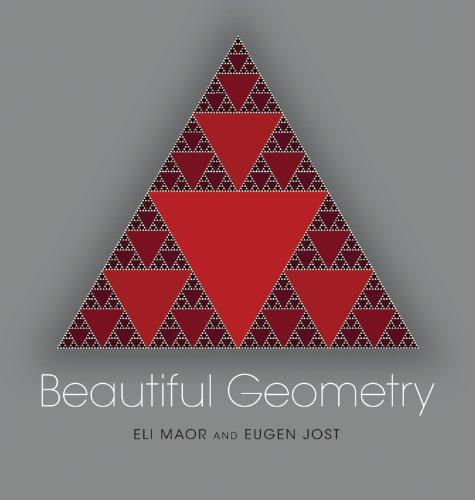 9780691150994: Beautiful Geometry