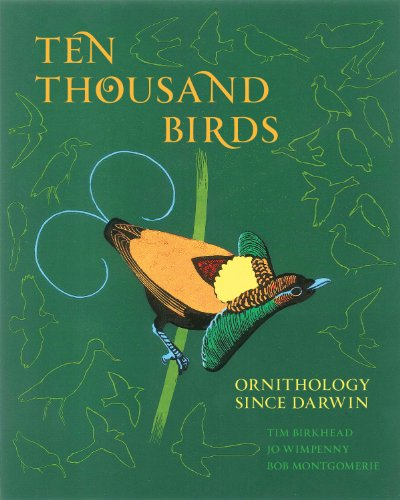 9780691151977: Ten Thousand Birds: Ornithology since Darwin
