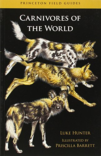 9780691152288: Carnivores of the World (Princeton Field Guides)
