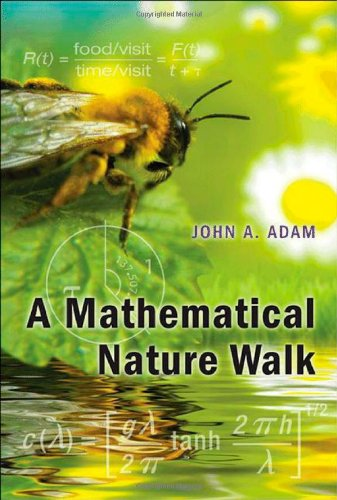 9780691152653: A Mathematical Nature Walk