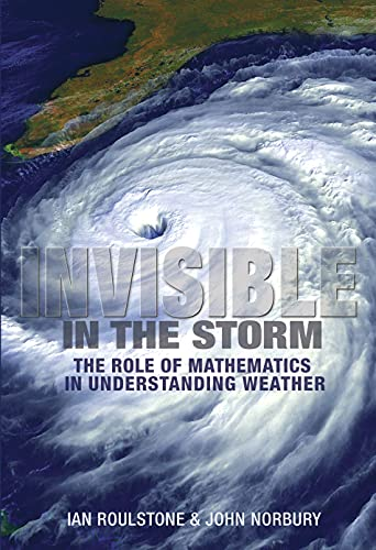 9780691152721: Invisible in the Storm: The Role of Mathematics in Understanding Weather