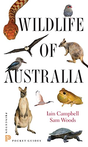 9780691153537: Wildlife of Australia (Princeton Pocket Guides)