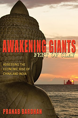 9780691156408: Awakening Giants, Feet of Clay: Assessing the Economic Rise of China and India